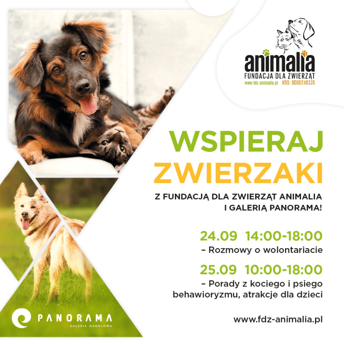 J051 Panorama Animalia 2021_1080x1080 FB Post